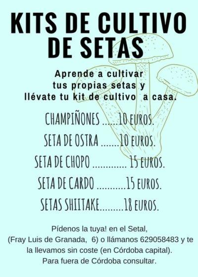Kits de Cultivo Setas