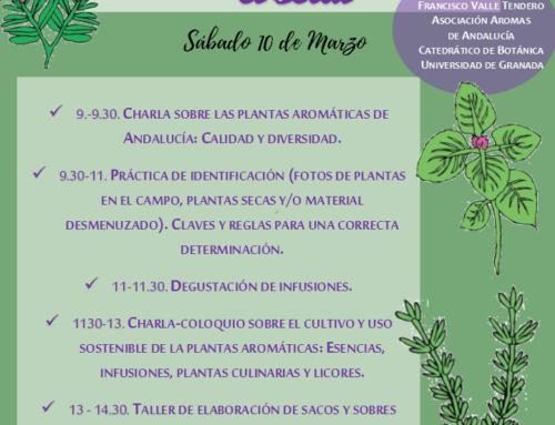 TALLER DE PLANTAS AROMÁTICAS ANDALUZAS