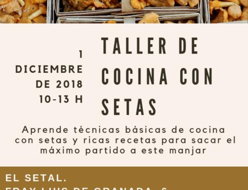 TALLER DE COCINA CON SETAS