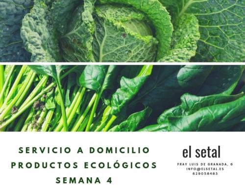 SEMANA 4.EL SETAL. HOJA DE PEDIDO PRODUCTOS ECOLÓGICOS.