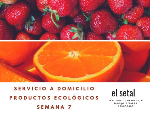SEMANA 7. EL SETAL. HOJA DE PEDIDO PRODUCTOS ECOLÓGICOS.