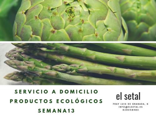 SEMANA 13. EL SETAL. HOJA DE PEDIDO PRODUCTOS ECOLÓGICOS.
