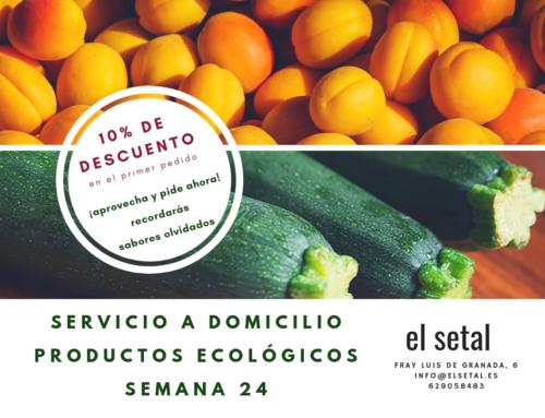 SEMANA 24. EL SETAL. HOJA DE PEDIDO PRODUCTOS ECOLÓGICOS.